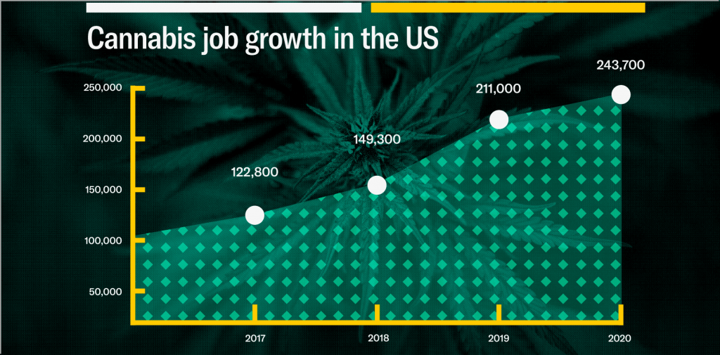cannabis job growth in the US