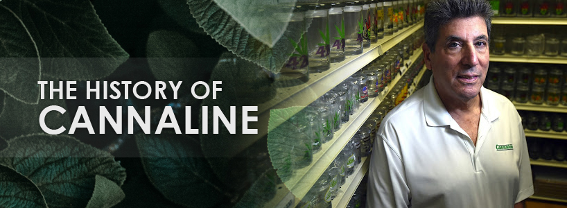history of cannaline